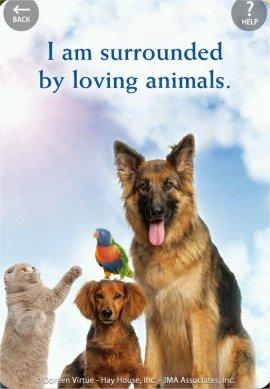 私は、愛すべき動物たちに囲まれています。