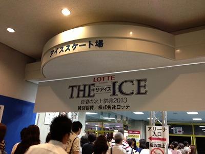 THE ICE 2013