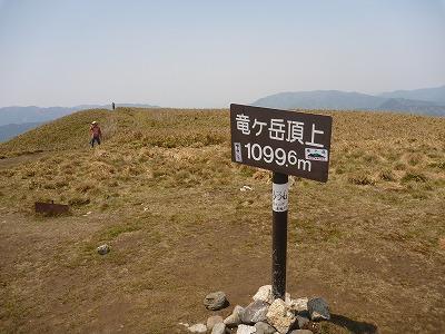 P1110257.jpg
