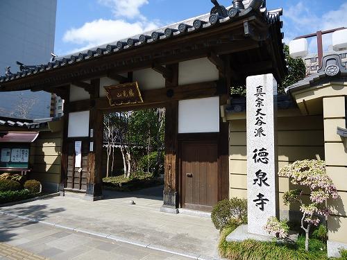 1304sakura005.jpg