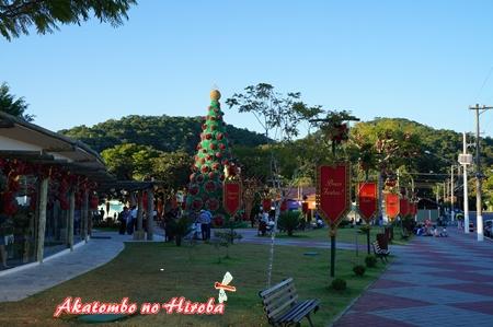 2-エコクリスマス-