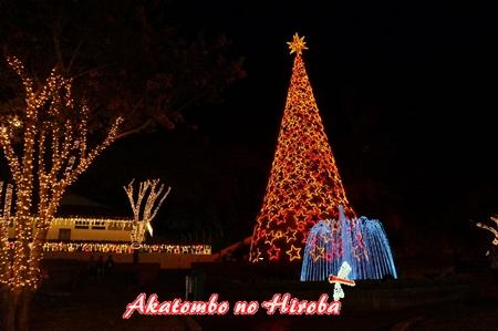 2-エコクリスマス-05