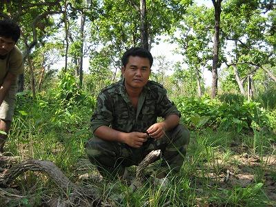 s-Aki Ra portrait in the jungle - landscape