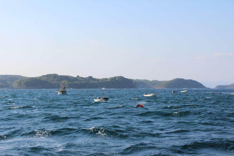 ウニ漁 (3)