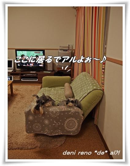 0422_4.jpg
