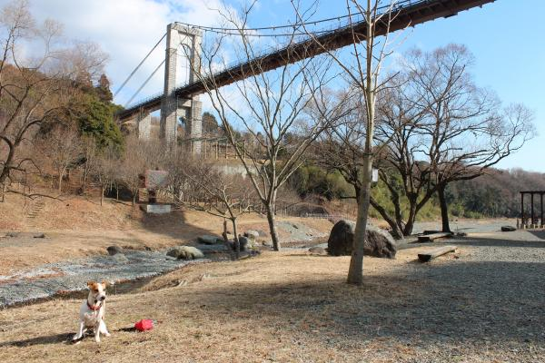 戸川公園3