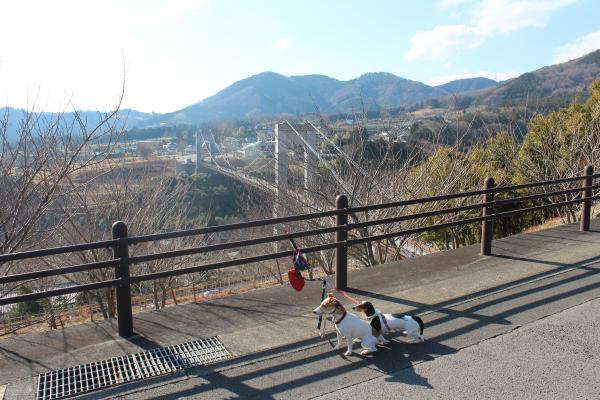 戸川公園7