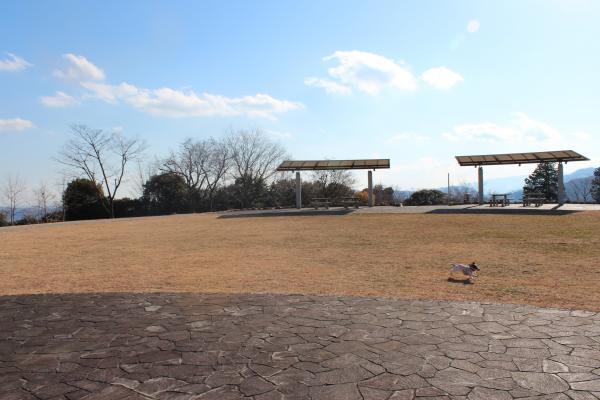 戸川公園8