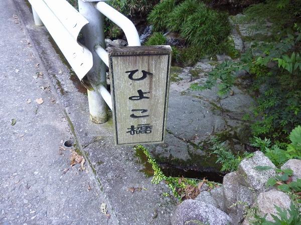 P1050340.jpg