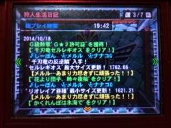 20141018_mh4g.jpg