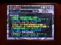 20141025_mh4g_02.jpg
