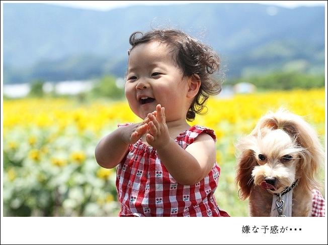 20130701_8974.jpg