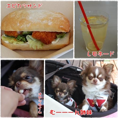 昼飯タイム