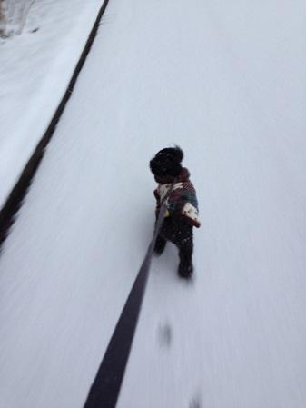 SNOW 2 (1)