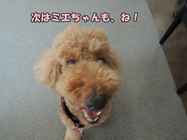 DSCN546620130916.jpg