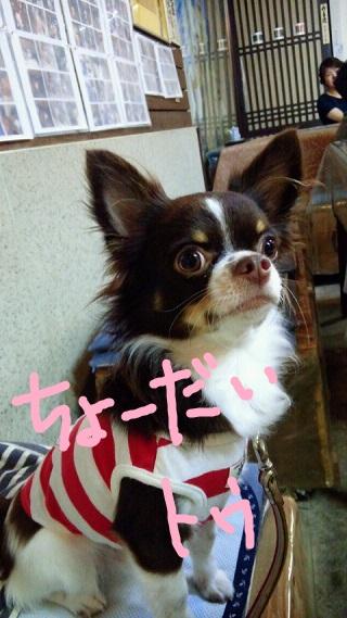 misaki10.jpg