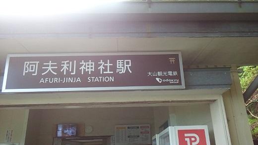 oyama22.jpg