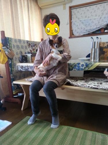 20140926里親さんとひめB