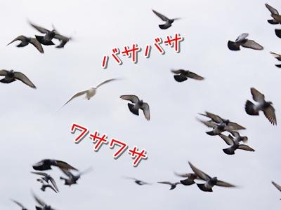 20140212_2.jpg