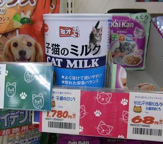 子猫のミルク