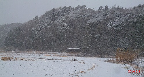 s-雪景色140208②