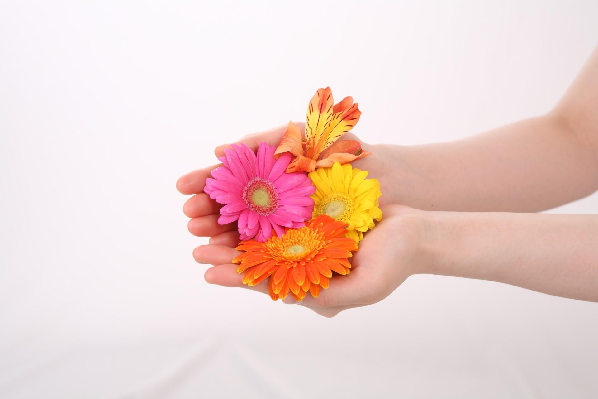 floweronhand.jpg