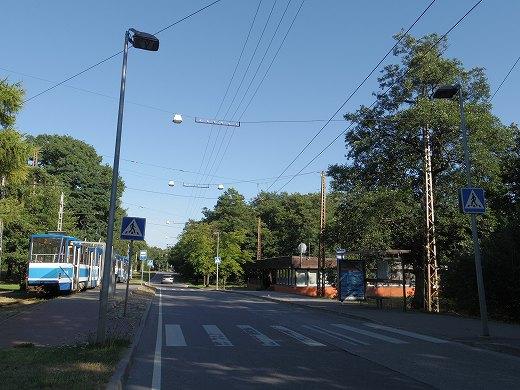 IMGP0964.jpg