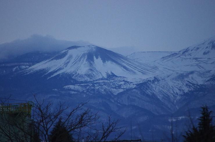 福島の雪兎。