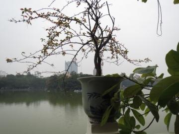 3-37 テラス席から見える湖