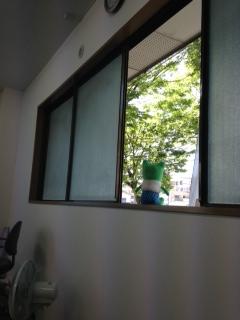 窓クッキー