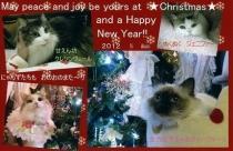 9-201201クリスマスカード003