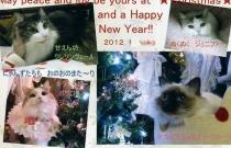 9-201202クリスマスカード004