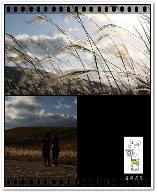 2014-11-13-12.jpg
