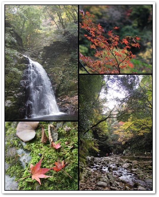2014-11-13-7.jpg
