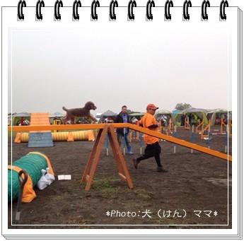 2014-11-2-1.jpg