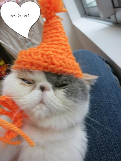 あずきの帽子失敗作!