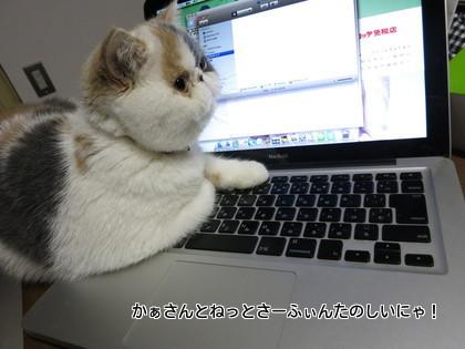 かぁさんとパソコン