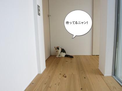 ドアの前で待ってます