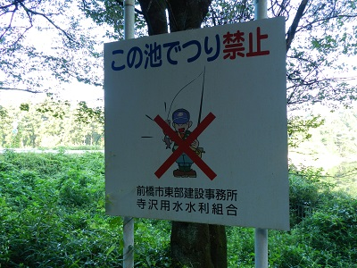 terazawa-09.jpg