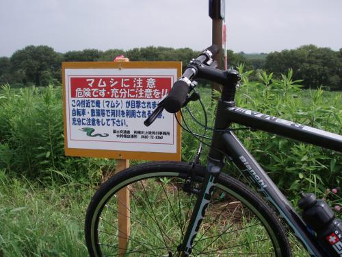 crossbike_convert_20130805123845.jpg