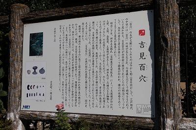 saitama_20131124_001.jpg