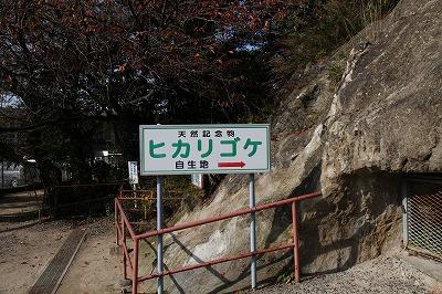 saitama_20131124_006.jpg