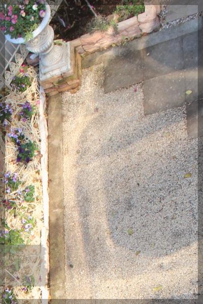 寝室前 テラス コケ取り 庭づくり 2013