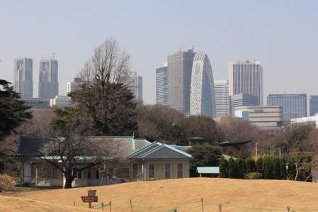 新宿摩天楼。_800