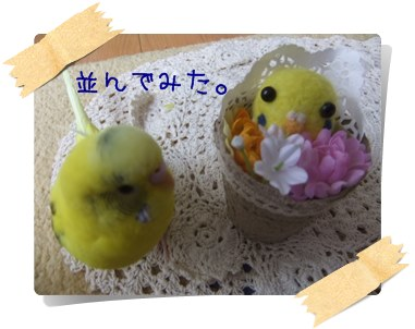 DSCF5461.jpg