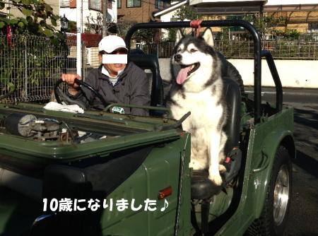 20141103_1.jpg