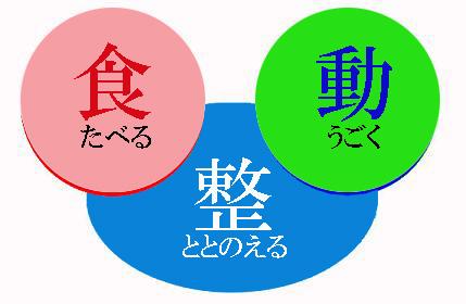 ◆食・動・整3