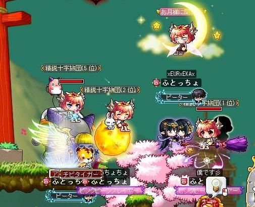 Maple131215_230623.jpg