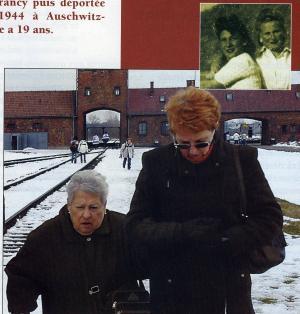Auschwitz 7