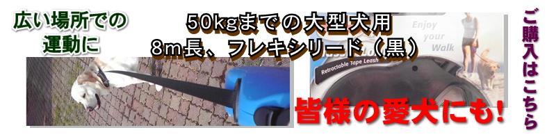FlexiBlackBanner1.jpg